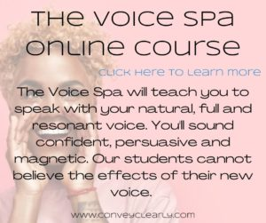 the voice spa
