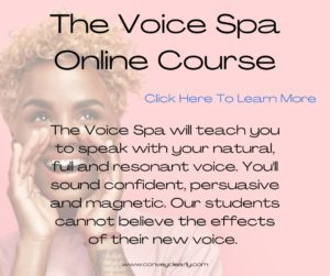 the voice spa with convey