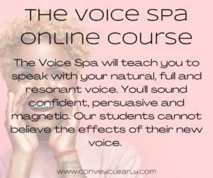the voice spa online