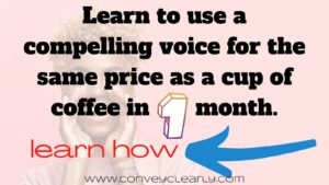 The Voice Spa Online Course